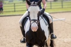 SCRC_CampSomerford-224